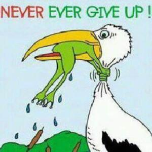 never-giv-eup