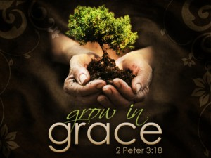 grow-in-grace-2-peter-3-18-500x375